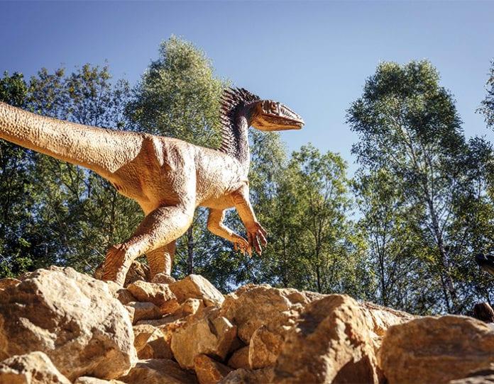 dinopark_Altmuehltal_Ausflug_Dinosaurier_Fossilien
